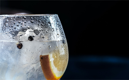Gin and tonic en casa