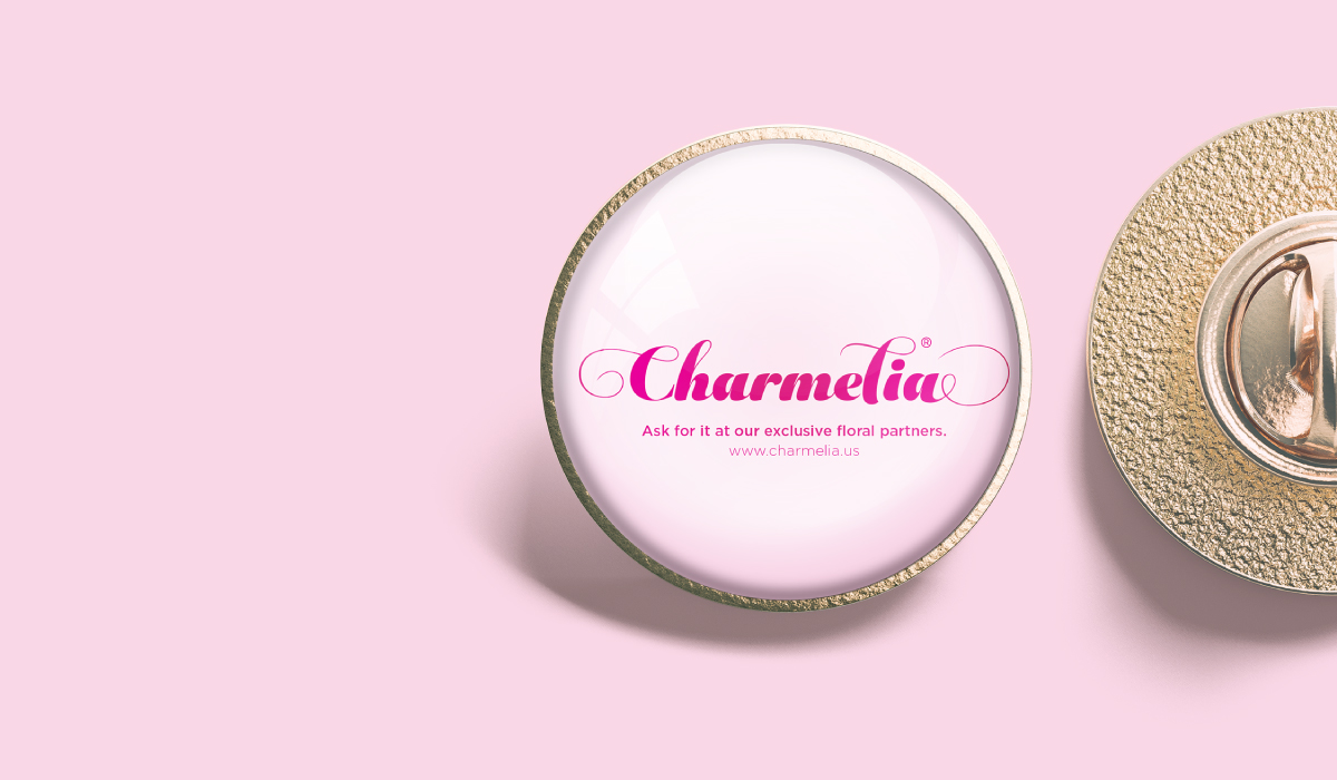 Charmelia