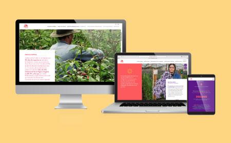 Jardines de los Andes - Página web