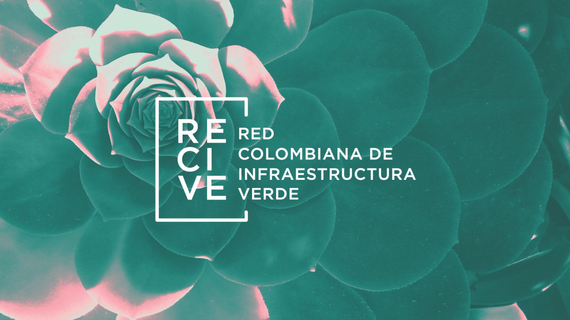 Recive